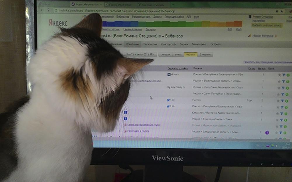 Тимофей смотрит Вебвизор