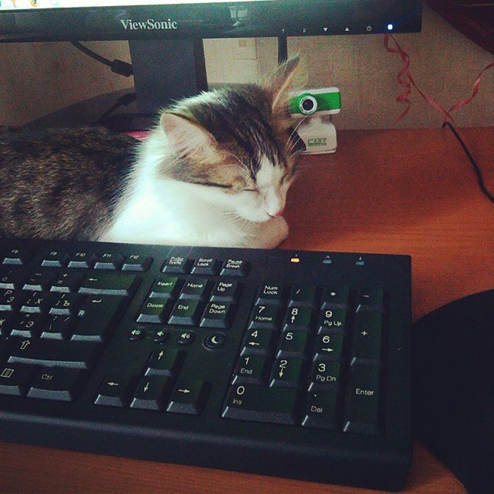 Тимофей отдыхает после работы